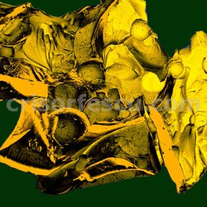 Molecular_Zoo-nanoart-print-gallery-inks-canvas-digital fine art-giclee