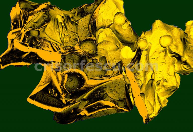 Molecular_Zoo-nanoart-print-gallery-inks-canvas-digital fine art-giclee