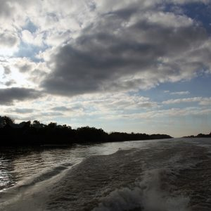 Danube-River-Delta-by-Boat-–-Sulina-Branch
